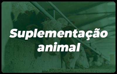 Suplementação Animal