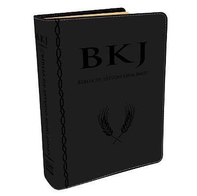 BÍBLIA DE ESTUDO KING JAMES 1611 - PRETA - ESTUDO HOLMAN