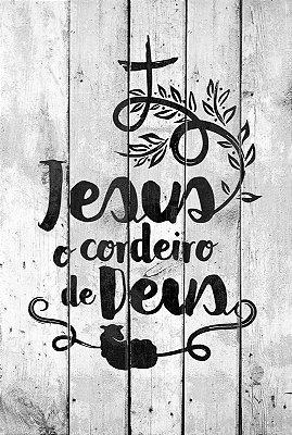 BÍBLIA SAGRADA NVT CORDEIRO DE DEUS