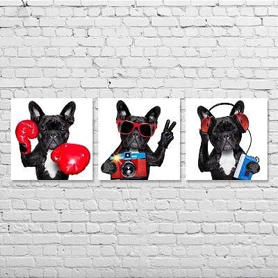 Kit de Quadros - Cachorro Buldogue Francês - 3 peças