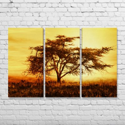 Quadro Decorativo Paisagem Árvore na Savana Mosaico 3 peças