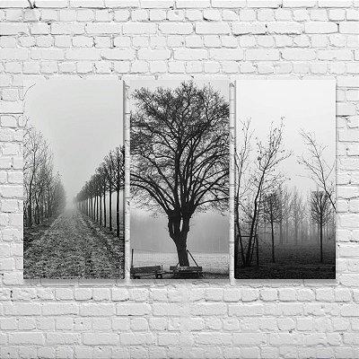 Quadros Preto e Branco Árvores Secas - Kit 3 Quadros