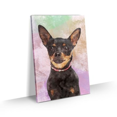 Quadro de Cachorro Pinscher Colorido Arte Aquarela