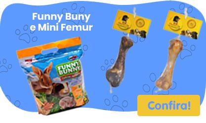 Funny Bunny e Mini Femur