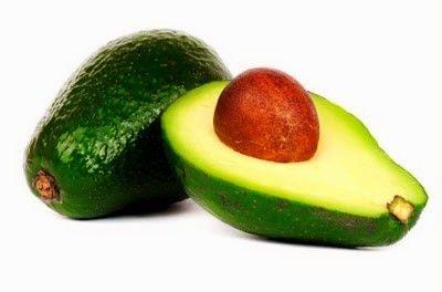 Abacate Geada - Muda Enxertada