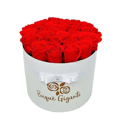 Exclusivo Box Rígido Branco c/ 25 Rosas Vermelhas Importadas