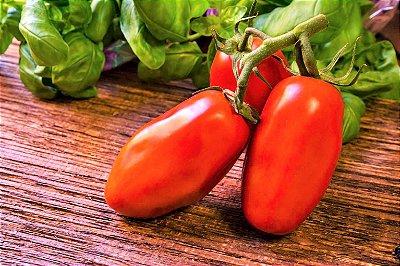 Tomate Napoleão - kit c/ 8 Sementes