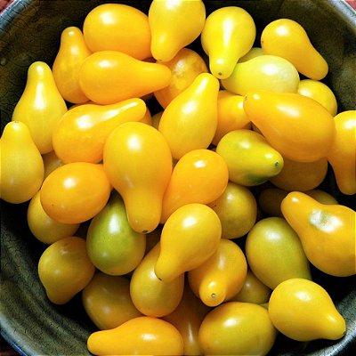 Tomate Lumen - Raridade - kit c/ 6 Sementes