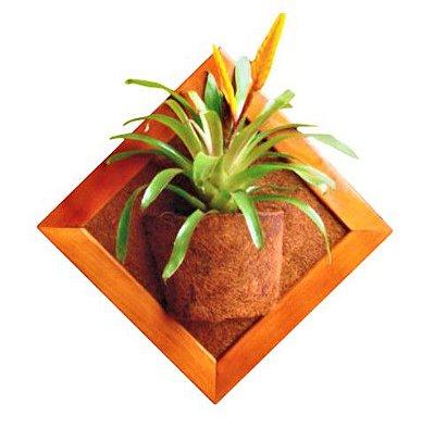 Vaso Artesanal de Parede - Madeira e Fibra de Coco - 45 x 45cm