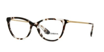 Dolce & Gabbana DG3258 2888