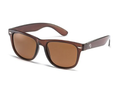 Wayfarer Brown Polarized