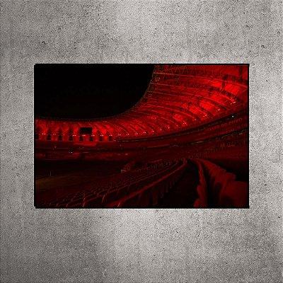 Imagem impressa - Estádio Beira-Rio - BRI11 - 90cmx60cm.