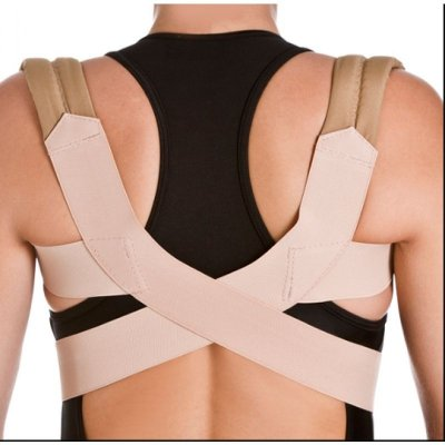 Espaldeira Simples para Postura C331 – Chantal