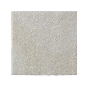 Curativo Alginato de Cálcio e Prata 10x10cm Hidrofibra BIATAIN AG Coloplast 3760