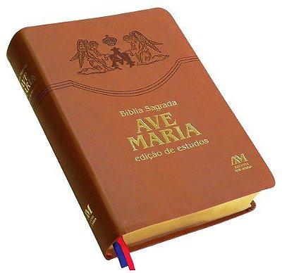 Bíblia edição de estudos - 613026