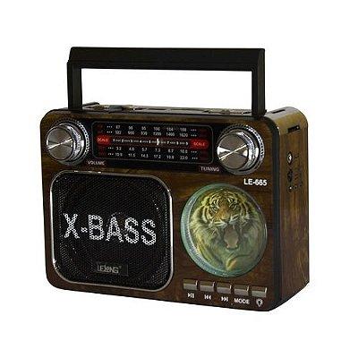 Rádio Portátil Bluetooth, AM/FM, USB, P2 e Cartão de Memória, A luz e Bateria