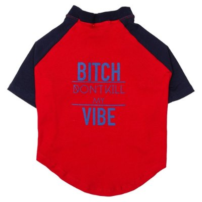 Camiseta Don't Kill My Vibe