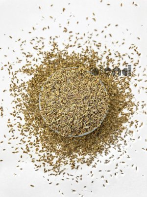Endro Sementes - 500 gramas
