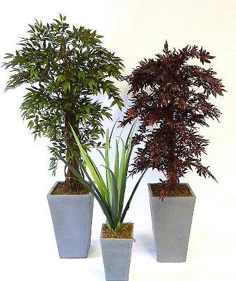 Plantas Permanentes