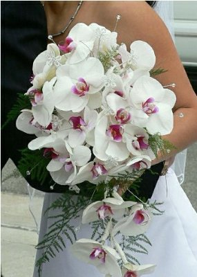 Bouquets de Noiva / Orquideas