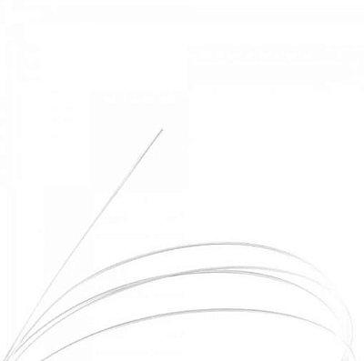 Corda Avulsa para Violão Nylon Giannini GENWPALM2 2a .032 Clássico Tensão Pesada