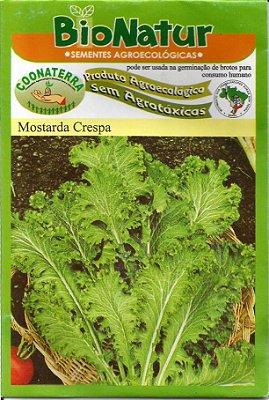 Semente Orgânica de Mostarda Crespa 1 gr