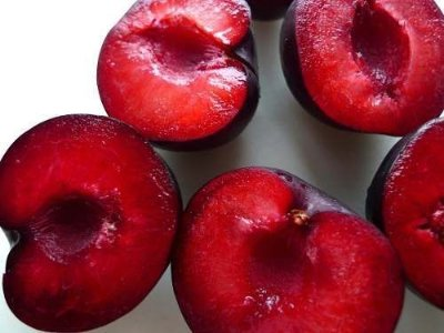 Duas Mudas De Ameixa Vermelha Enxertadas - Pluma 7 + Fortune