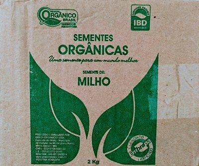Sementes Orgânicas de Milho BRS CAIMBÉ 2 KG + Brinde