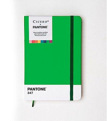 Caderneta Ciceros Cicero e Pantone Sem Pauta 14×21 Verde