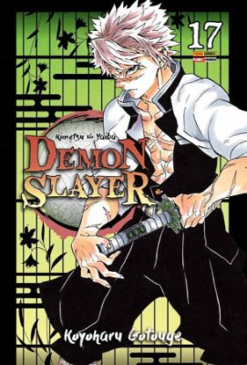 Demon Slayer - Kimetsu no Yaiba - 17