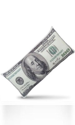 Almofada One Hundred Dollars - 100 dólares  Presentes Criativos