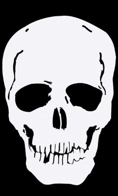 Camiseta Skull Face