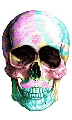 Camiseta Skull Cool