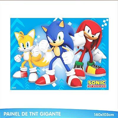 Painel em TNT Sonic