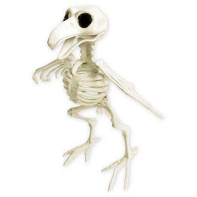 Esqueleto Pássaro