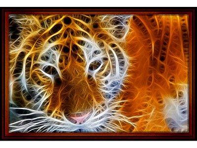 """Quadro Emoldurado """"Tigre em Chamas"""" 65x95cm"""