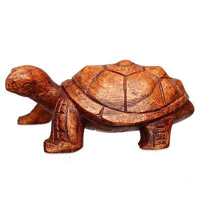 Escultura Tartaruga Em Madeira Suar