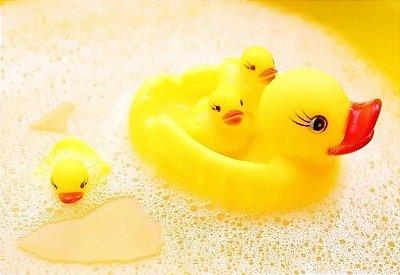 Bichinhos de brinquedo para Banho Patinho e Filhotes