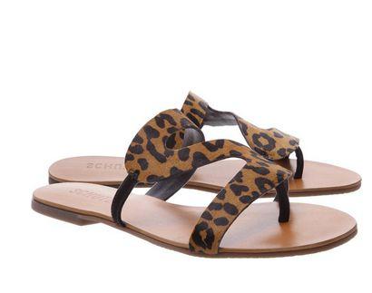 Slide Leopard Print