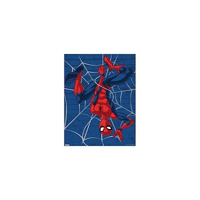 Placa Homem Aranha Teia