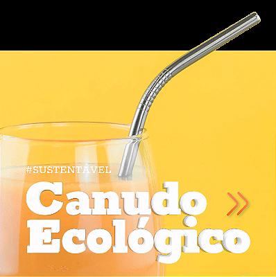 Canudo inox