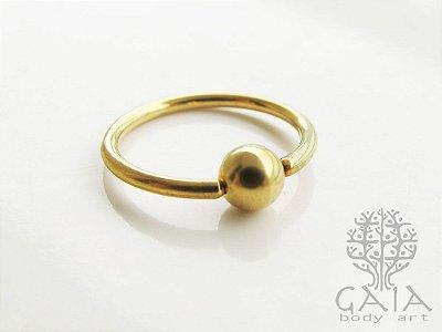 Captive Dourado