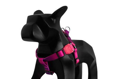 Zeedog Peitoral para Cachorros Juno