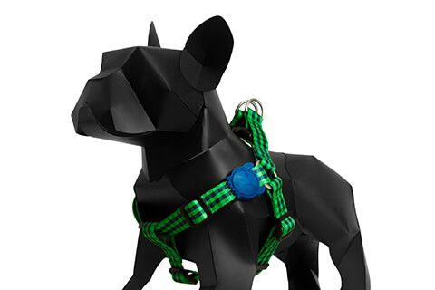 Zeedog Peitoral para Cachorros Jack