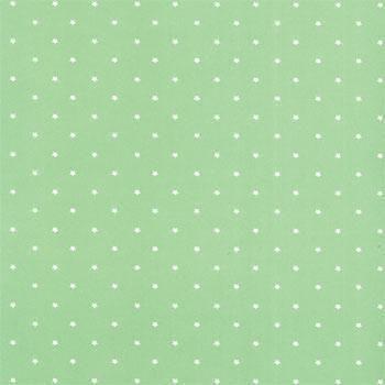 Folha de Scrapbook Estrela Grande Verde Claro