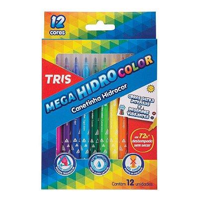 Canetinha Mega Hidrocolor 12 cores