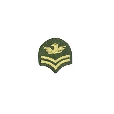 Patch Brasão Oval com Asas Verde com Bege