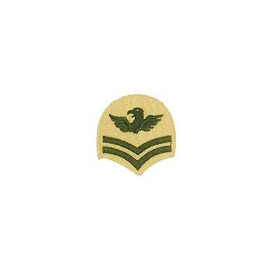 Patch Brasão Oval com Asas Bege com Verde