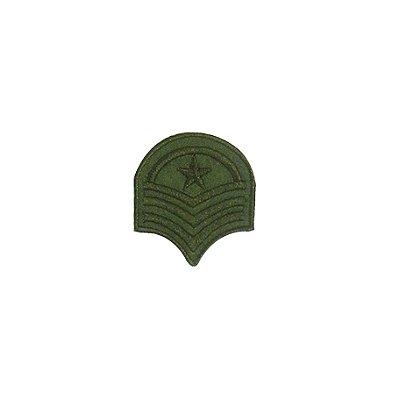 Patch Brasão Oval com Estrela Verde