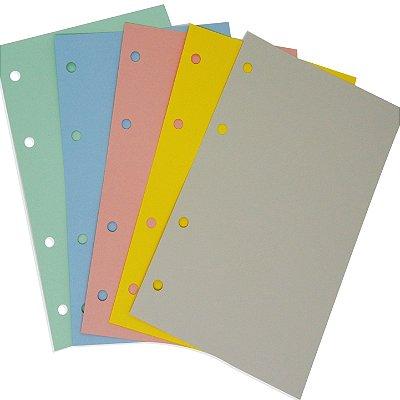 Refil Planner Organizador 167x240mm Colorido